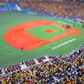 阪神タイガース応援ツアー【京セラドーム 大阪vs広島東洋カープ】